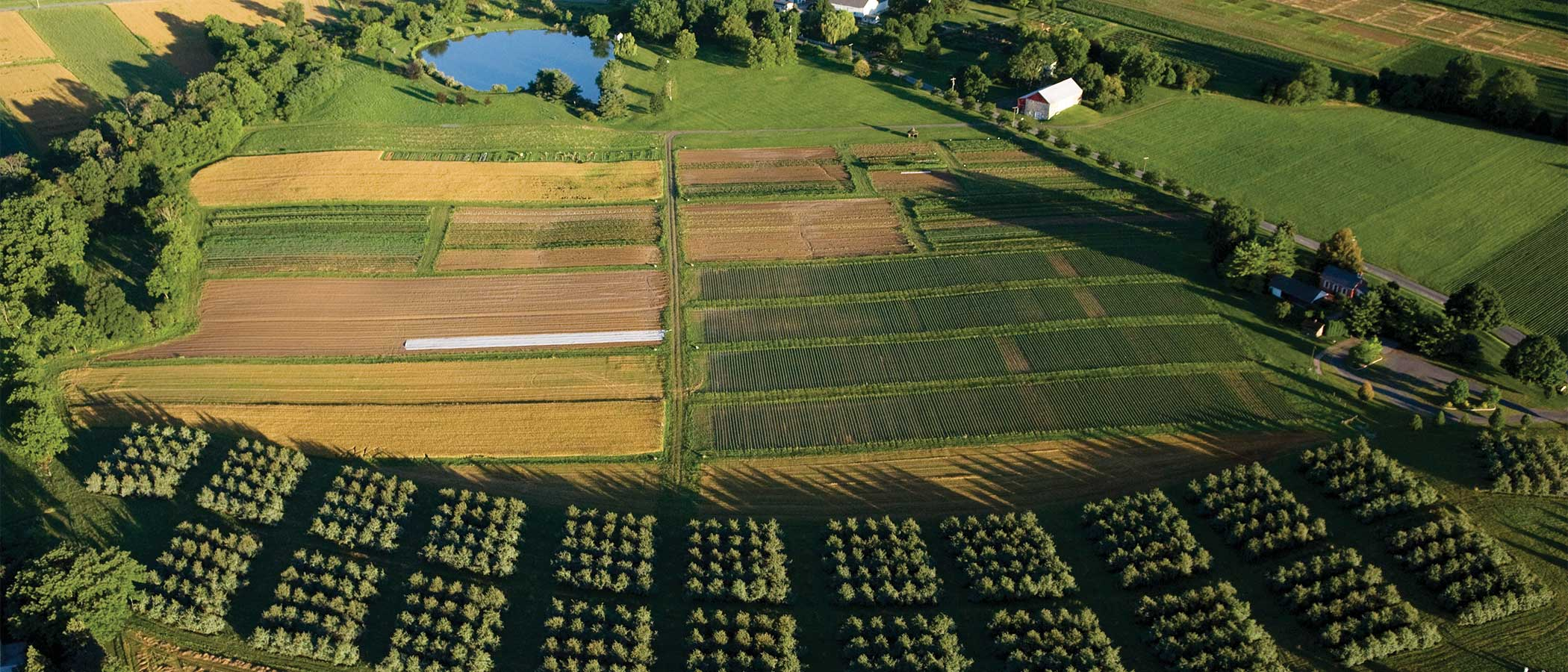 Aerial view of a farm practicing regenerative agriculture